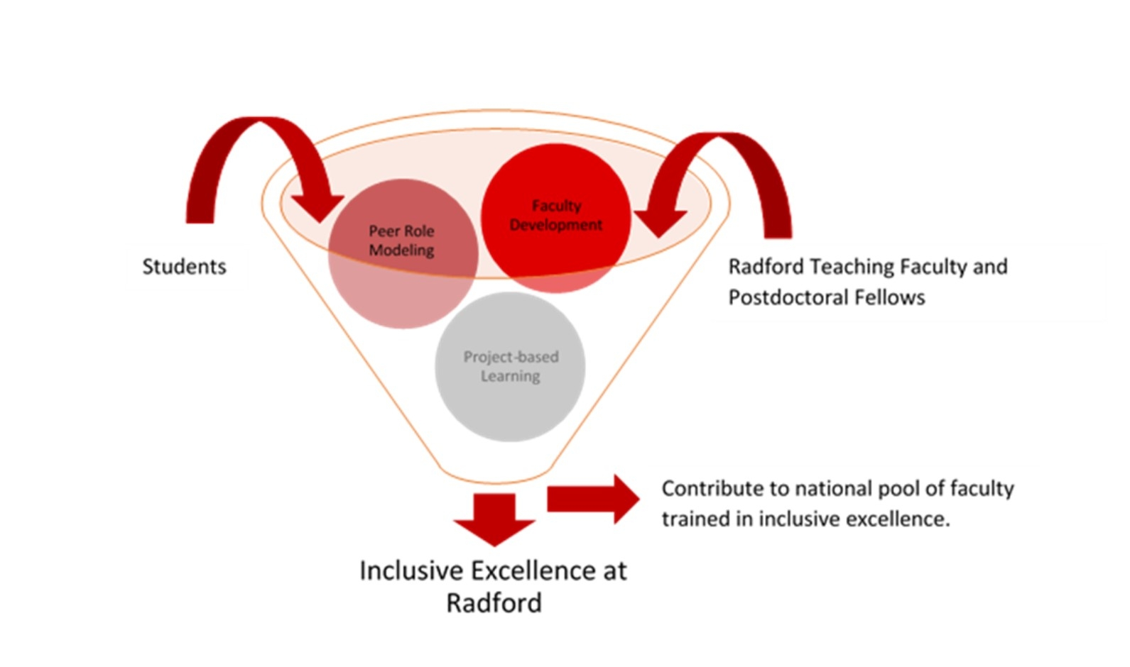 REALISE teaching graphic for inclusive excellence.  The graphic shows students, faculty development, Radford Teaching Faculty and Postdoctoral Fellows, and project based learning all going into a funnel.  Coming out of the funnel is Inclusive Excellence and contributing to a national pool of faculty trained in inclusive excellence.