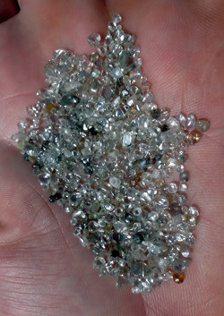 Ed Blackford displays a handful of diamonds from the Dream Hole Mining site
