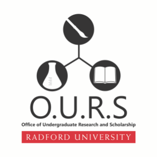 OURS-official-logo