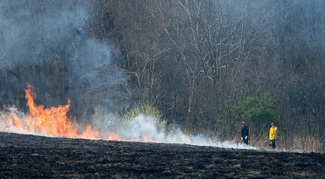Volunteers monitoring the remaining fire at the north edge of the field