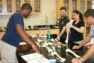 The three-day training session at Radford University included classroom instruction on identification and analysis of human remains and the application of forensic anthropology casework to death investigations.